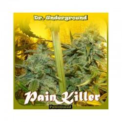 Painkiller 8 u. Feminizadas