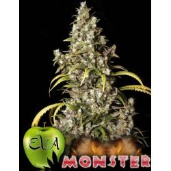 Monster 3 u. Feminizadas