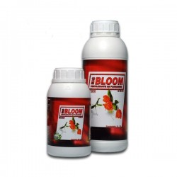Big Bloom 1L (12 uni/caja)