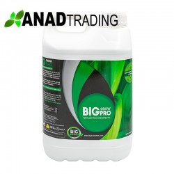 Big Grow Pro 5L ( 4uni/caja)