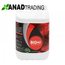 Big Bloom 5L (4 uni/caja)