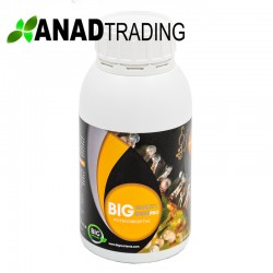 Big Quality Resin 500ml (12uni/caja)