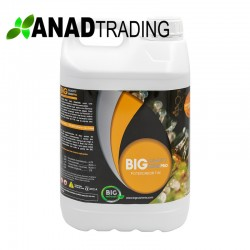 Big Quality Resin 5L (4uni/caja)