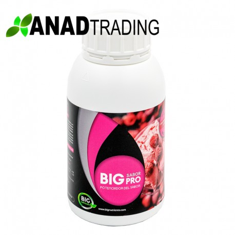 Big Sabor Pro 500ml (12uni/caja)