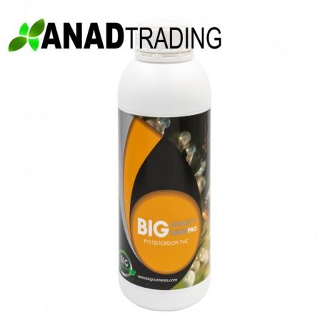 Big Quality Resin 1l (12uni/caja)