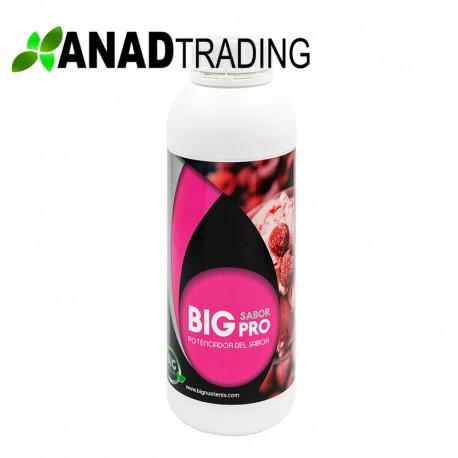 Big Sabor 1l (12uni/caja)