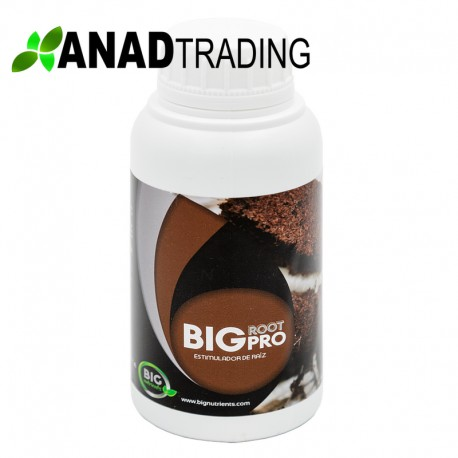 Big Root 300ml (9unid/caja)