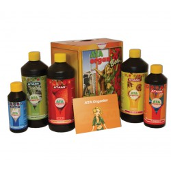 Box Organic