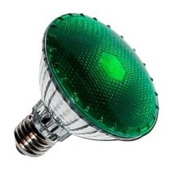 Bombilla 100w Agrolite DARK NIGHT (Luz Verde)