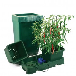 ESAY2GROW SYSTEMS