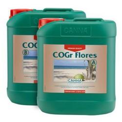 Cogr Flores A - 5 l Canna
